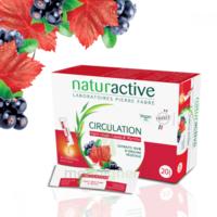 Naturactive Phytothérapie Fluides Solution Buvable Circulation 20 Sticks/10ml à Lesparre-Médoc