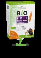 3 Chenes Bio Radis Noir Solution Buvable Foie 30 Ampoules/10ml à Lesparre-Médoc