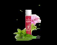 PURESSENTIEL ANTI-PIQUE Roller 11 huiles essentielles à Lesparre-Médoc