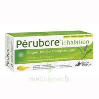 Perubore Caps Inhalation Par Vapeur Inhalation Plq/15 à Lesparre-Médoc