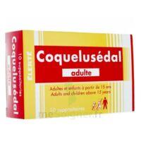 Coquelusedal Adultes, Suppositoire à Lesparre-Médoc
