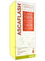 Ascaflash Spray Anti-acariens 500ml à Lesparre-Médoc