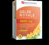 Forte Pharma Gelée Royale 1000 Mg Solution Buvable 20 Ampoules/10ml à Lesparre-Médoc