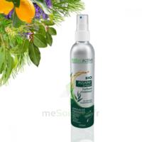 Naturactive Assaini'spray 200ml à Lesparre-Médoc