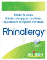 Boiron Rhinallergy Comprimés B/40 à Lesparre-Médoc