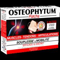 Osteophytum Patchs Muscles Coups Tendons Articulations 2b/14 à Lesparre-Médoc
