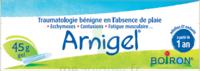 Boiron Arnigel Gel T/45g à Lesparre-Médoc