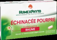 Echinacee Pourpre Humexphyto Cpr Pell Plq/20 à Lesparre-Médoc