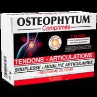Osteophytum Comprimés Renfort Et Mobilité Articulaire B/60 à Lesparre-Médoc